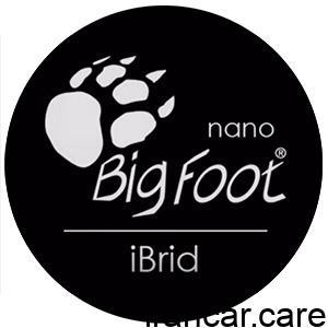 Ibird Logo